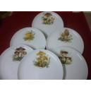 SERVICE  6 Assiettes plates Elysée en porcelaine décors  CHAMPIGNONS