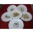 SERVICE  6 Assiettes plates Modèle FRYDERYKA en porcelaine décors  CHASSE