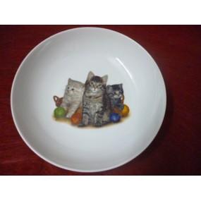 ASSIETTE creuse ELYSEE Décor chats en porcelaine
