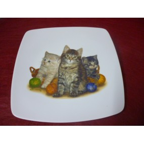 ASSIETTE PLATE CARREE SAHARA en porcelaine DECOR CHATS