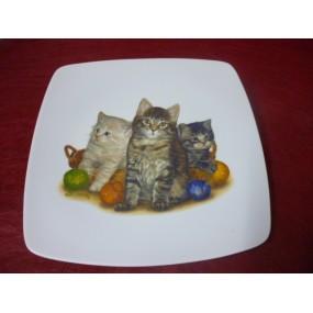 ASSIETTE PLATE CARREE SAHARA en porcelaine DECOR CHATS