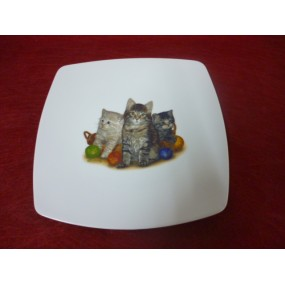 ASSIETTE A DESSERT SAHARA en porcelaine DECOR CHATS