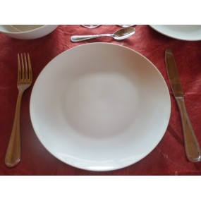 ASSIETTE PLATE COUPE LEO 27cm en porcelaine blanche